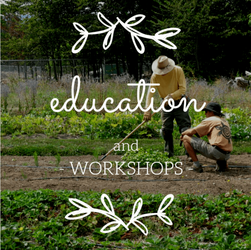 Growing Food class: Info session Feb 27