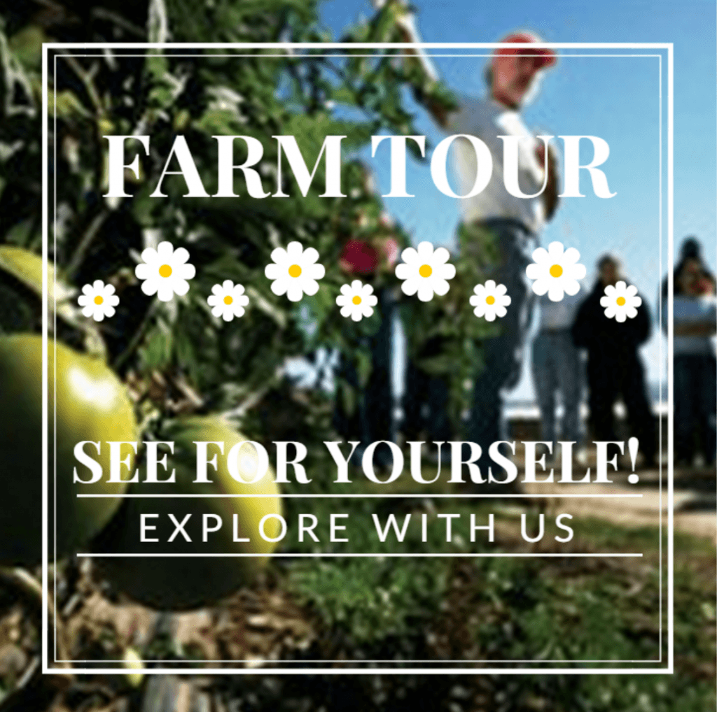 EcoFarmers – Your West Coast Winter Workshop's Here!