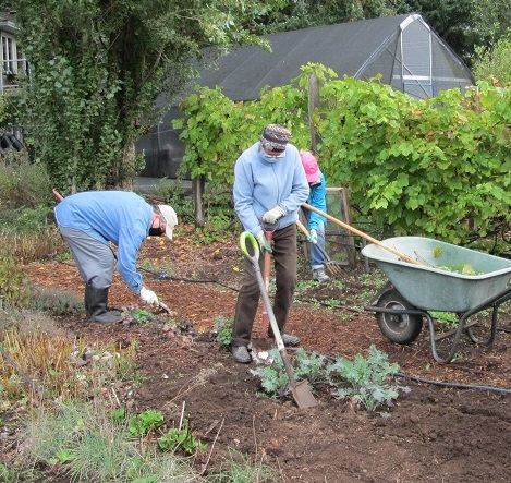 December Farm Work Party – cancelled